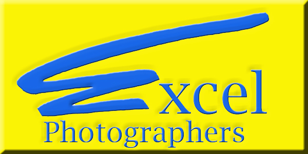 Excel Photog website button.jpg